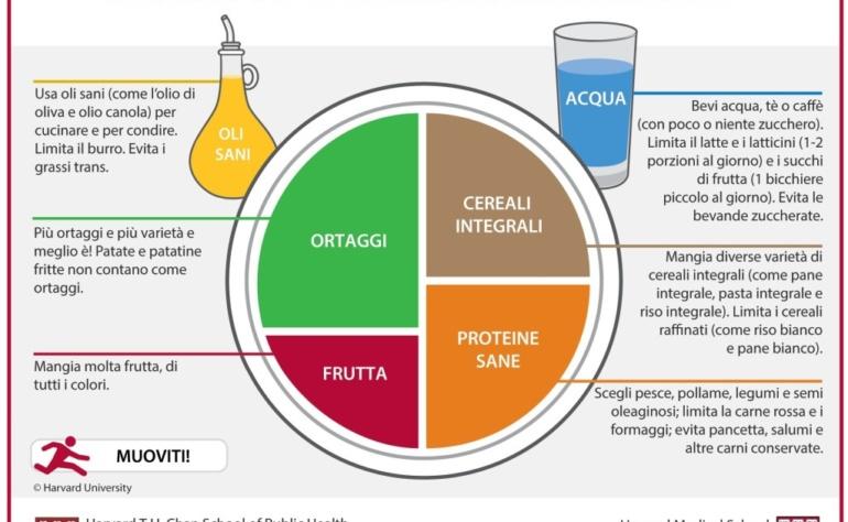 Il piatto del benessere alimentare